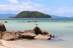 piękne wysp brytyjskich wysp raju piasku palm piaskowatych kawałki drzewa w kolorze turkusowym dziewica white wody Obraz Stock