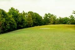 Piękne zielone łąki wokoło i drzewa obrazy stock