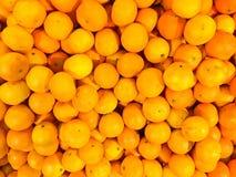 Pięknego żółtego naturalnego słodkiego smakowitego dojrzałego miękkiego round jaskrawi jaskrawi tangerines, owoc, clementines Tek zdjęcia royalty free