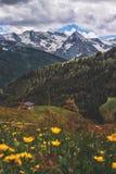 Pięknego Austriackiego góra krajobrazu Forest Green sezonu podróży lokacji Pogodna natura obraz stock