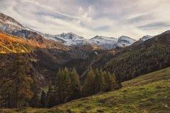 Pięknego Austriackiego góra krajobrazu Forest Green sezonu podróży lokacji Pogodna natura zdjęcie royalty free