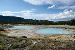 Pięknego cyraneczki aqua gorącej wiosny błękitne geotermiczne cechy wśrodku Yellowstone parka narodowego zdjęcia royalty free
