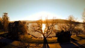 Pięknego jeziornego magicznego godziny światła widok z lotu ptaka drzew latający drewna zbiory wideo
