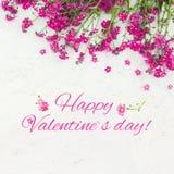 Pięknego kartka z pozdrowieniami walentynki ` s szczęśliwy dzień Fotografia Stock