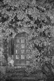 Pięknego rocznika Wiktoriańskiego dworu wejściowy drzwi otaczający obok Zdjęcia Royalty Free