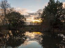 Pięknego słońca jesieni światła ustalony niebo nad rzecznymi drzew odbiciami Obraz Stock