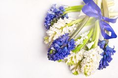 Pięknego wiosna kwiatu tła Błękitnej i Białej hiacyntu tła Odgórnego widoku Białej wiosny wakacje karty kopii Wielkanocna przestr Obrazy Royalty Free