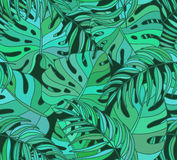 Pięknej bezszwowej tropikalnej dżungli kwiecisty deseniowy tło Fotografia Stock