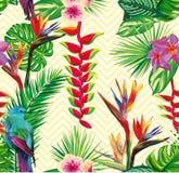 Pięknej bezszwowej tropikalnej dżungli kwiecisty deseniowy tło Zdjęcie Royalty Free