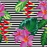 Pięknej bezszwowej tropikalnej dżungli kwiecisty deseniowy tło z palmą opuszcza i kwitnie Obrazy Stock