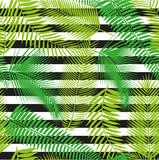 Pięknej bezszwowej tropikalnej dżungli kwiecisty deseniowy tło z palmowymi liśćmi Obrazy Royalty Free