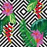 Pięknej bezszwowej tropikalnej dżungli kwiecisty deseniowy tło z palmowymi liśćmi Zdjęcia Stock