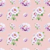 Pięknej białej peoni bezszwowy wzór Bukiet kwiaty Kwiecisty druk Markiera rysunek ilustracji