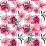 Pięknej czułej delikatnej cudownej uroczej ślicznej wiosny kwieciste ziołowe peonie z zielonych liści akwareli deseniową ręką kre Obraz Stock