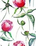 Pięknej czułej delikatnej cudownej uroczej ślicznej wiosny kwieciste ziołowe peonie z zielonych liści akwareli deseniową ręką kre Zdjęcia Stock