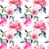 Pięknej czułej delikatnej wyszukanej cudownej uroczej ślicznej wiosny kwieciste ziołowe botaniczne czerwone proszkowate różowe ró Zdjęcia Stock
