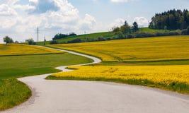Pięknej gwałta pola wiosny wiejski krajobraz Fotografia Royalty Free