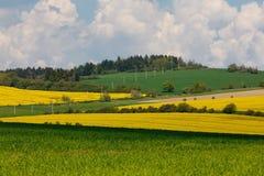 Pięknej gwałta pola wiosny wiejski krajobraz Zdjęcie Royalty Free