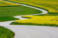 Pięknej gwałta pola wiosny wiejski krajobraz Obrazy Stock