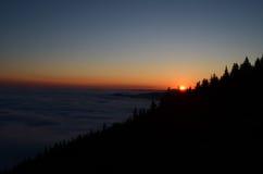 pięknej ilustracyjnej łąkowej natury pozytywnej wiosna pogodny wschód słońca Zdjęcie Stock