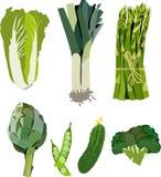 Pięknej jaskrawej grafiki zieleni jarski zdrowy wzór organicznie warzywa: szalotka, karczoch, Chińska kapusta, asparagus royalty ilustracja
