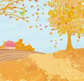 Pięknej jesień wiejski krajobraz Obraz Royalty Free