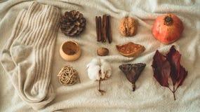 Pięknej jesieni sezonowy tło Jesień asortymentu sosny rożka bawełna, mandarynka, orzech włoski, cynamon, liście, physilis granato obraz stock