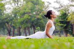 Pięknej kobiety ćwiczy joga w parku zdjęcie royalty free