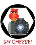 Pięknej kreskówki czerwona sowa siedzi na guzika początku kamerę w ramie kamera, s apertura « Pojęcie fotografia, royalty ilustracja