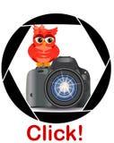 Pięknej kreskówki czerwona sowa siedzi na guzika początku kamerę w ramie kamery apertura Pojęcie fotografia, ilustracja wektor
