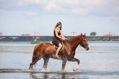 Pięknej nastoletniej dziewczyny jeździecki koń w rzece Zdjęcia Stock