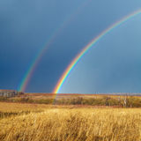 Pięknej Pełnej tęczy above Rolny pole przy wiosną Zdjęcia Stock