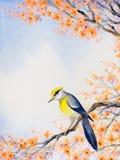 pięknej ptaka gałąź kwiatonośny ilustraci wektor adobe korekcj wysokiego obrazu photoshop ilości obraz cyfrowy prawdziwa akwarela ilustracja wektor