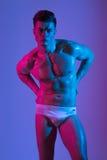 Pięknej sportowej bodybuilder samiec wzorcowy pozować w studiu Mięśniowy zdrowy seksowny ciało Wyrażenie na kamerze mieszany Fotografia Stock