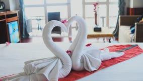 Piękni łabędź robić od białych ręczników w Koh Phangan wyspy hotelu swobodny ruch 3840x2160, 4K zdjęcie wideo