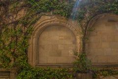 Piękni archs obrazy royalty free