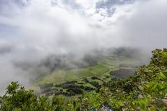 Piękni Azores paśniki obraz royalty free