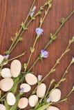 Piękni błękitni wildflowers i biel kamienie na drewnianej powierzchni obrazy royalty free