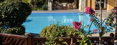 Piękni czerwień kwiaty kwitnęli w krzakach z pływackim basenem w tle Obrazy Stock