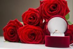 Piękni czerwień kwiaty wzrastali Fotografia Royalty Free