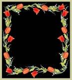 piękni dekoracyjni struktury lelui o tulipany Zdjęcie Royalty Free