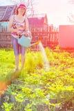 Piękni dojrzali kobiety podlewania ogródu łóżka z uprawianymi warzywami zdjęcie royalty free
