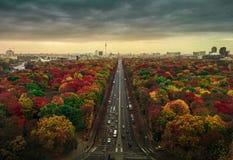 Piękni drzewa barwią w Berlińskim pejzażu miejskim strzelającym od Siegessaule obrazy royalty free