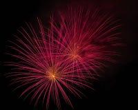 Piękni fajerwerki przy nocą Fotografia Royalty Free