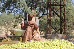 Piękni Indiańscy dziewczyny sprzedawania koloru żółtego pomidory Obraz Stock
