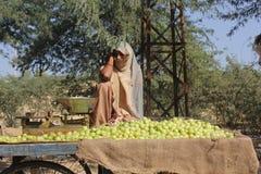 Piękni Indiańscy dziewczyny sprzedawania koloru żółtego pomidory Obrazy Stock
