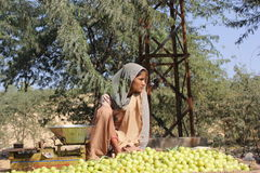 Piękni Indiańscy dziewczyny sprzedawania koloru żółtego pomidory Fotografia Royalty Free