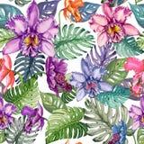 Piękni jaskrawi orchidea kwiaty i monstera liście na białym tle Bezszwowy tropikalny kwiecisty wzór adobe korekcj wysokiego obraz Zdjęcie Stock