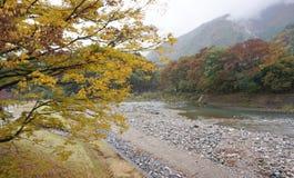 Piękni jesieni drzewa wzdłuż rzeki Shirakawa wioska Zdjęcia Stock
