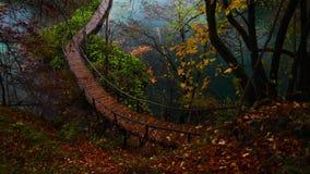 Piękni jeziora i jesień las w Plitvice parku narodowym, Chorwacja zbiory